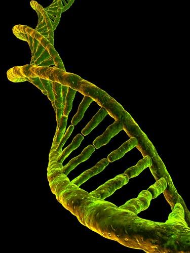 Structure de l'ADN. Source : http://le-dclic.info/700-teraoctet-dans-un-brin-dadn/.